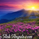 Signs From the Deceased~ With Archangel Gabriel