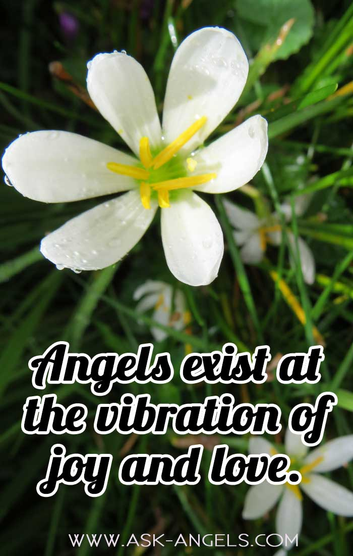 Angels Vibrate with Joy and Love