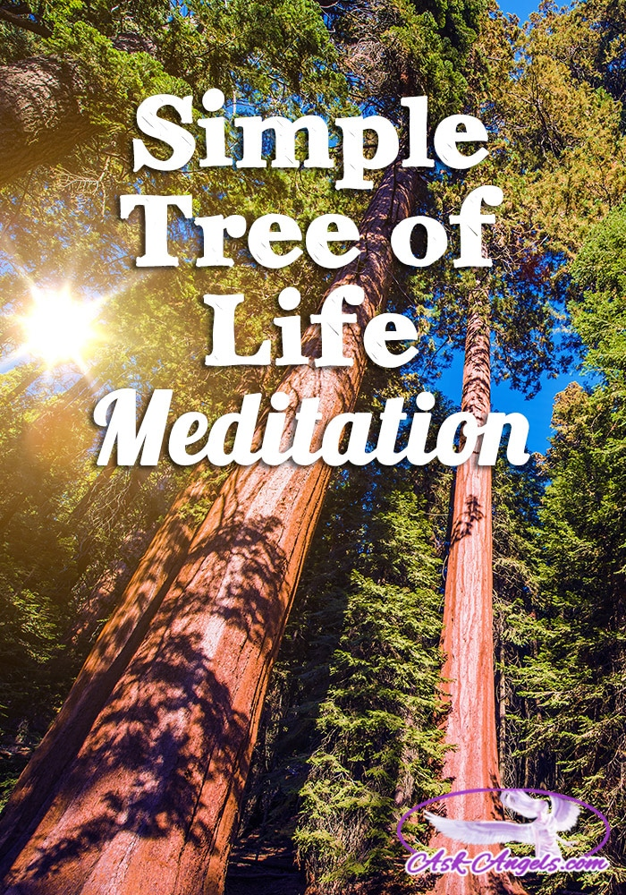 Tree of Life Meditation