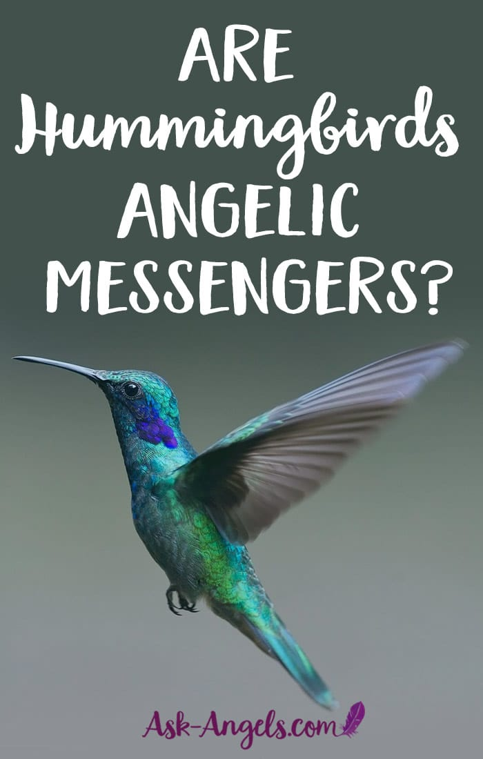 Hummingbird Messengers
