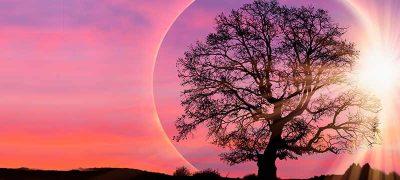 New Moon Eclipse Meditation