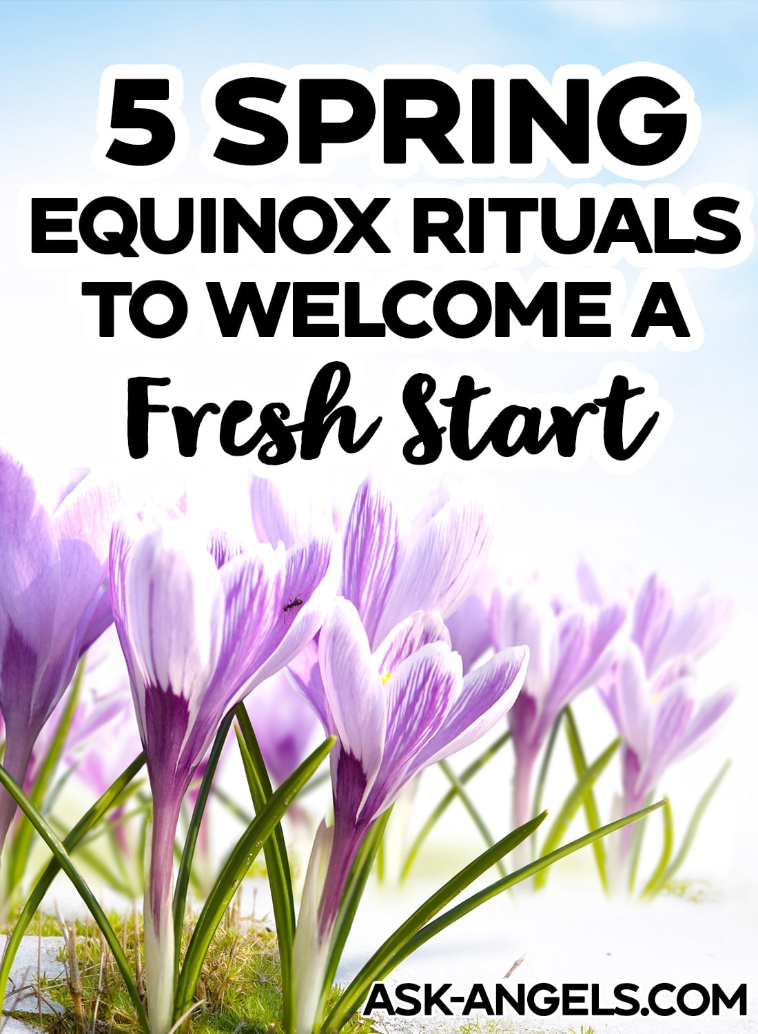 5 Spring Equinox Rituals to Welcome a Fresh Start